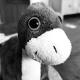 Paul Gierz's avatar
