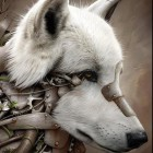 View SyntheticWolf's Profile