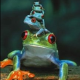 Jimi Damon's avatar