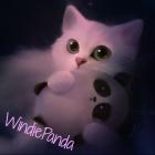 Photo of WindiePanda