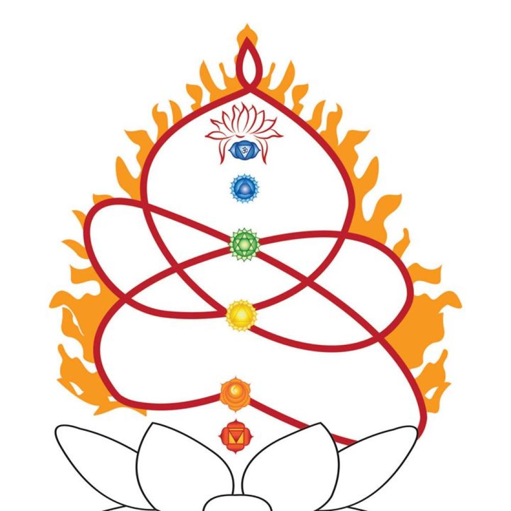 yogavini