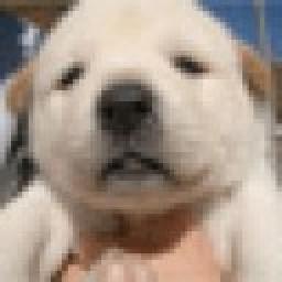 avatar de JoCkEy
