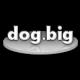 dogbig's avatar
