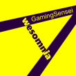 TheGamingSensei