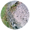 esnho's icon
