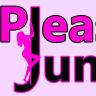 pleasurejunctionshop