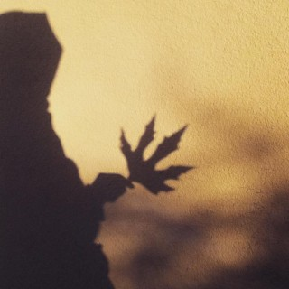 autumn leaves under my feet