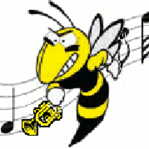 Profile picture for Marching Hornets