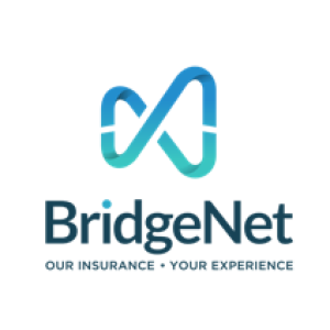 Avatar of bridgenetins