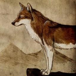 wolftankk