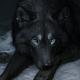 Marwolf's avatar