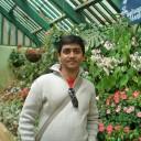 Krishnasanjeevani