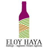 Eloy Haya