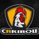 Caribou51