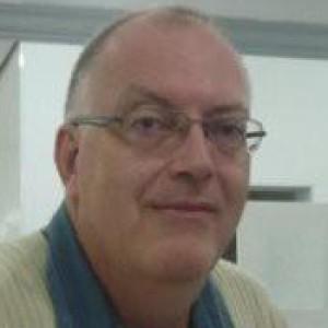 Henrique Frank Werner Puhlmann