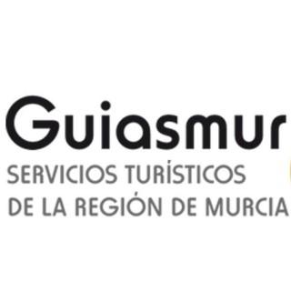 Guiasmur, guías oficiales de turismo