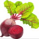 slk1g17's avatar