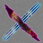 View Xavion333's Profile