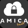 Amica Technology Ltd