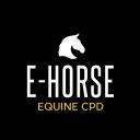 E-horse
