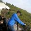Syed Atif Ahmed