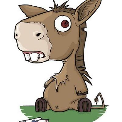 Avatar of Matt Holbrook-Bull