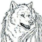 View Noxilie's Profile