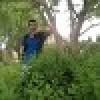 تصویر hamed