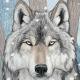 Amunak's avatar