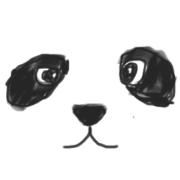 Xiaofeng Wang
