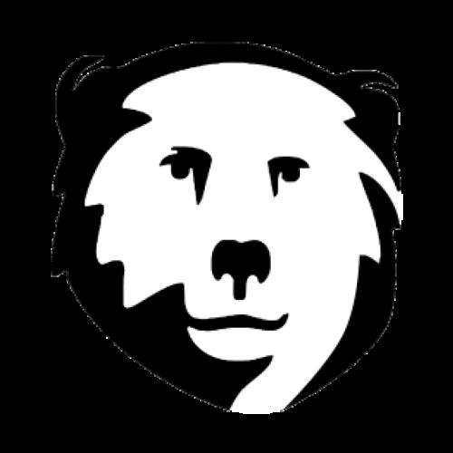 Josip Medved