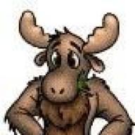 moose517