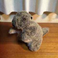 marmot1123