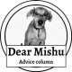 Dear Mishu