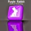 purplerabbitinternetmarketing