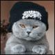emmo4u's avatar
