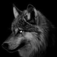 Lonewolf953