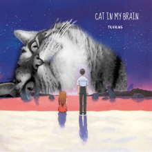 CatinmyBrain