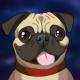 Dylan Wilson's avatar