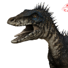 View Raptor_Red's Profile