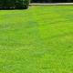GreenPal Lawn Care of Stockton