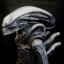 ..Alien King..