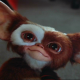 WebGremlin's avatar