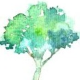Avatar for monicaferreiro