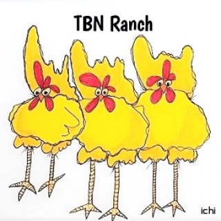 amy elizabeth TBN Ranch