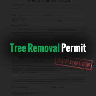 Tree Removal Permit