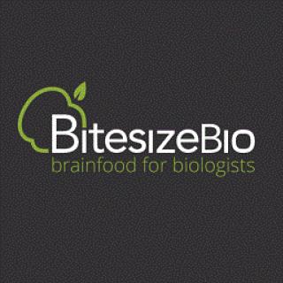 BiteSize Bio