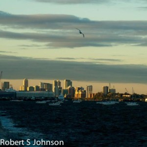 Robert Johnson's picture