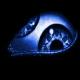adam9511's avatar