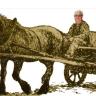 G, van der Weijden avatar